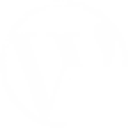 Magento, Wordpress, Pimcore